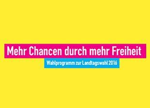 Logo Landtagswahlprogramm